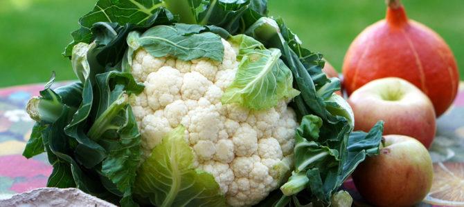 16 października – Światowy Dzień Owoców i Warzyw?